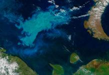Statoil informa sobre descubrimiento de gas en el Mar de Barents