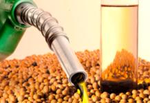 Biodiésel: Estados Unidos le pidió a la Argentina revisar las retenciones a la soja