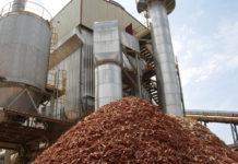 Dos firmas españolas se aliaron a una argentina para construir 10 plantas de biomasa